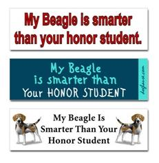Dogs vs. Honor Students | TGAW